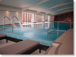 Swimming Pool News Latest News Contech Show Flexibility Of Concrete Pools